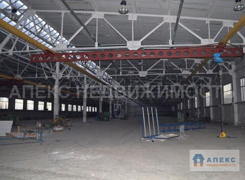 Продажа помещения пл. 5100 м2 под производство, , офис и склад, . - Фото 4