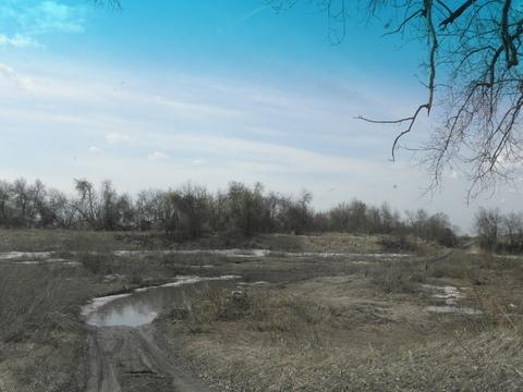 Продам дешево 10 гектар земли в Сухобузимском районе на берегу Енисея - Фото 4