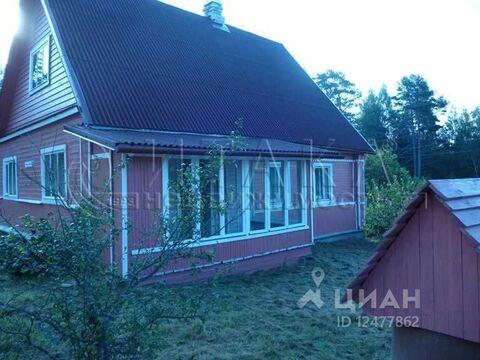Дом в Псковская область, Плюсский район, с. Ляды (63.0 м) - Фото 1