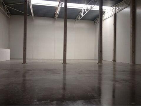 Сдам складское помещение 1900 кв.м, м. Девяткино - Фото 2
