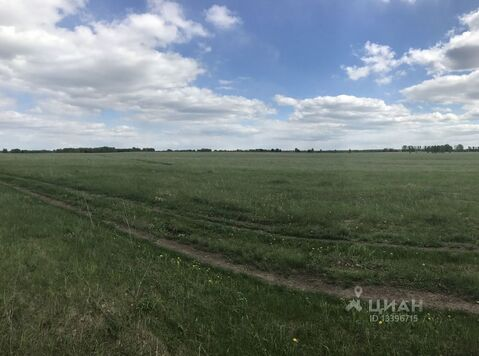 Продажа участка, Барнаул, Ул. Кедровая - Фото 2