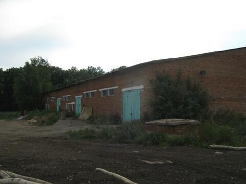 Производственное помещение в Толбазах - Фото 4
