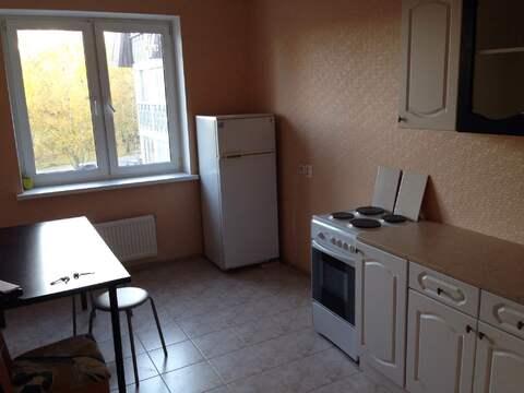 Пушкинский р-н, г. Пушкин, аренда 2к.кв. 62 кв.м. - Фото 4