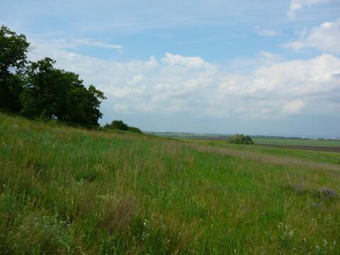 Земельный участок в 10 км от Саратова - Фото 5