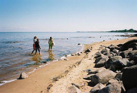 Участок у Чудского озера(500 м) - Фото 1