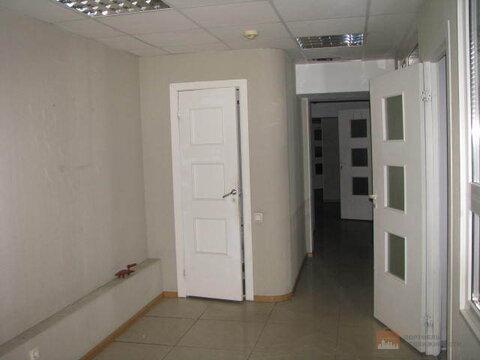 Продажа помещения на первой линии проспекта Луначарского, 321 кв. м - Фото 5