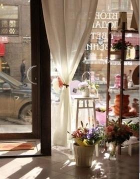 Сдам торговое помещение в Центре - Фото 2