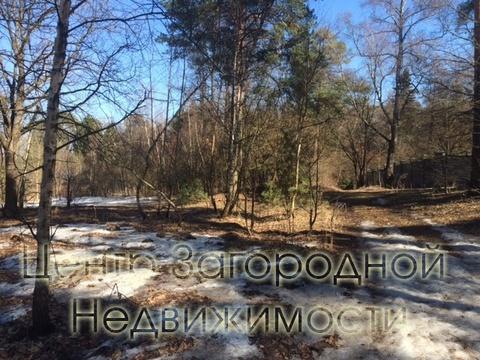 Участок, Рублево-Успенское ш, Новорижское ш, 32 км от МКАД, . - Фото 5