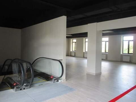 Аренда торгового помещения 460 м2 - Фото 4