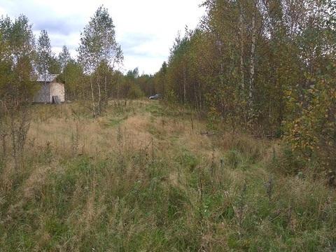 Участок 30 соток расположен в Щелковского р-на, д. Старопарее - Фото 2