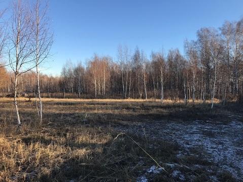 """Продам участок в Царицыно СНТ""""Фотон"""" - Фото 4"""