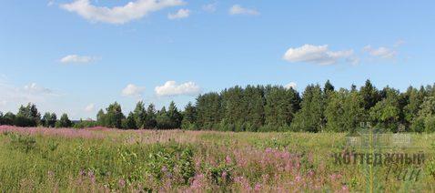 Купить земельный участок 22 га в деревне Горнешно, Окуловский район - Фото 1