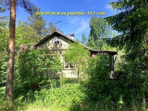 Продам 2 дома на участке 12,1 сот. в массиве Дунай - Фото 2