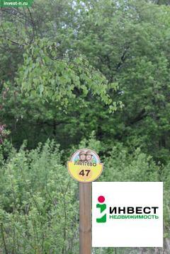 Продажа участка, Лаптево, Заокский район, Ул. Вязов - Фото 5