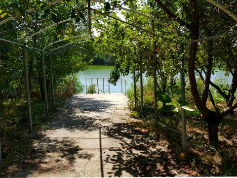 Шикарный дом у озера + 18 сот. земли - Фото 1