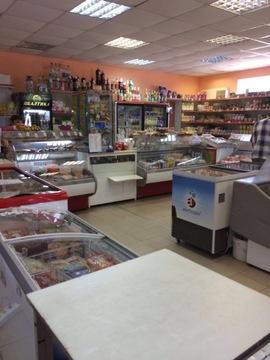 Магазин (пом.своб.назн.) 205м2 с.Нагорье - Фото 2