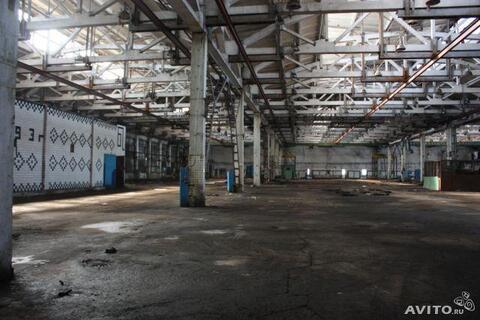 Аренда торгового помещения, Липецк, Трубный проезд - Фото 5