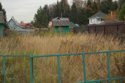 Участок в сосновом бору, 6сот, Волоколамское ш, 21км от МКАД. Дедовск . - Фото 2