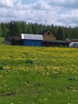 Жемчужная Плаза +25 мин по Петергоф.шоссе , Низино - Фото 2
