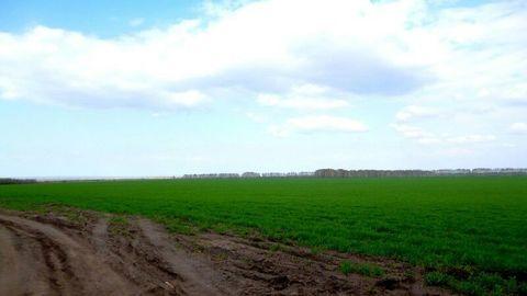 Продажа: участок 4000 соток, село Чувашский Сускан - Фото 1