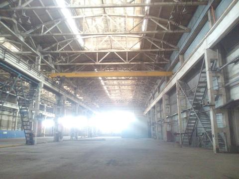 Аренда производственного помещения, м. Купчино, Финляндская ул. - Фото 2