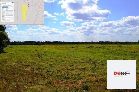 Продажа земли сельскохозяйственного назначения в Егорьевском р-не - Фото 4