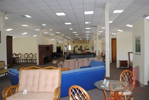Сдается торговое-офисное помещение 920м2. Центр - Фото 3