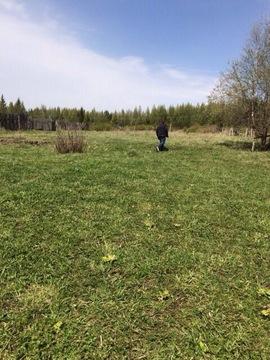 Предлагается земельный участок расположенный в Емельяновском районе в - Фото 2