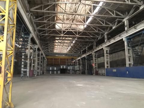 Аренда производственного помещения, м. Купчино, Финляндская ул. - Фото 1