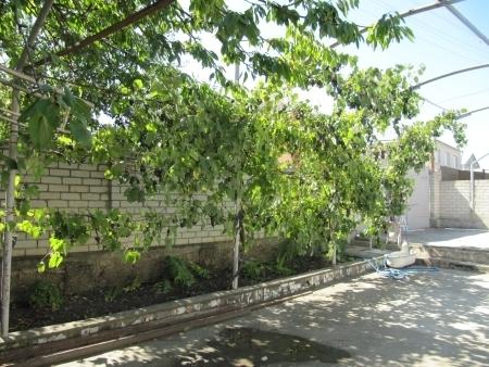 Продажа дома, Ессентуки, Кавказская ул. - Фото 1