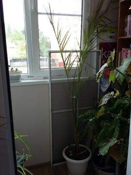 Продам 3-комнатную квартиру в Раменском - Фото 5