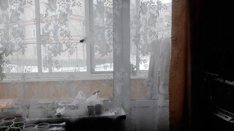 Продам 4-х комнатную на ул.5-я Коляновская - Фото 4