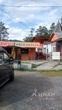 Продажа готового бизнеса, Чемальский район - Фото 2