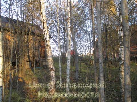 Участок, Ярославское ш, 41 км от МКАД, Никулино д. (Пушкинский р-н). . - Фото 4