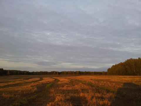 Продажа поляны в лесу 10 га на берегу озера - Фото 1