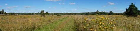Продажа земельного участка 32,3 га под проект коттеджного проекта - Фото 1