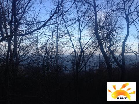 Продается земельный участок в окружений хвойного леса! - Фото 2