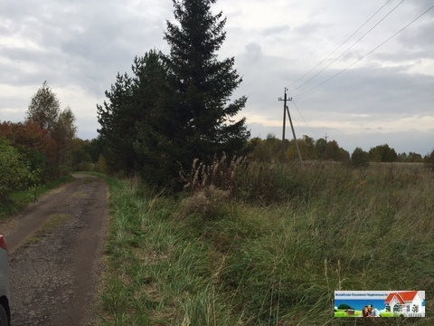 Продаю лесной участок в Московской области - Фото 5