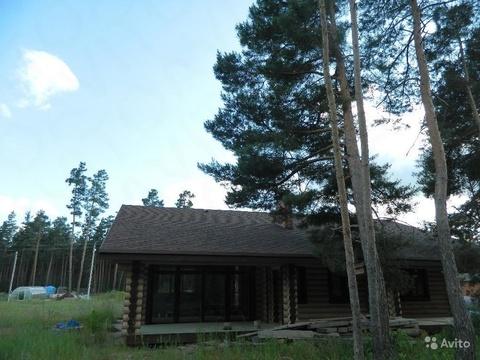 Продам дом в красивом и чистом шебекинском районе село новая таволжанк - Фото 2