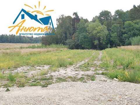 Продается земельный участок 10,5 соток в окружении леса в 3 км от Ново - Фото 5