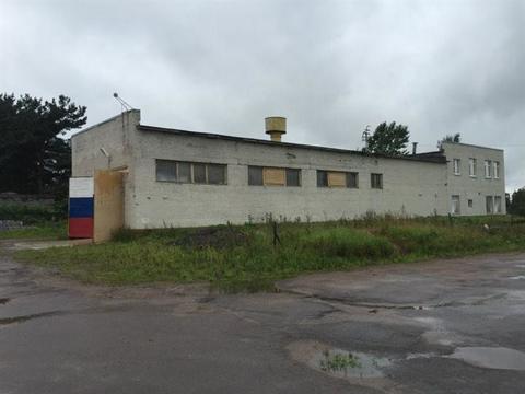Продам производственное помещение 441 кв.м, м. Улица Дыбенко - Фото 1