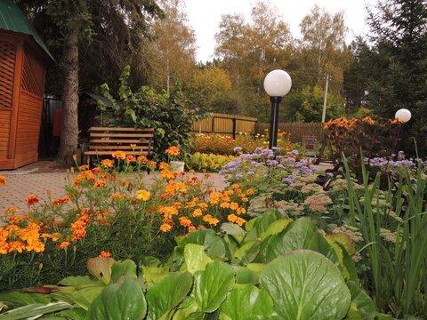 Продам загородный коттедж - дачу, расположенный в СНТ Лесовод, - Фото 3