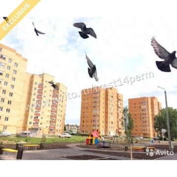 2-х комнатная квартира г.Кунгур ул.Шоссейная 45 - Фото 2