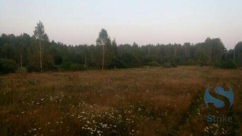 Продажа участка, Московка, Нижнетавдинский район - Фото 5