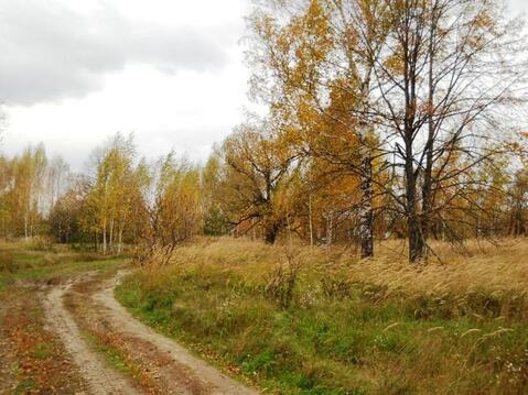 15 соток в д.Неверово, Рязанской области. - Фото 1