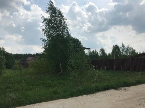 Продается отличный участок в деревне Малые Петрищи. - Фото 2