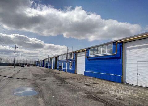Продажа производственного помещения, Бабяково, Новоусманский район, . - Фото 2