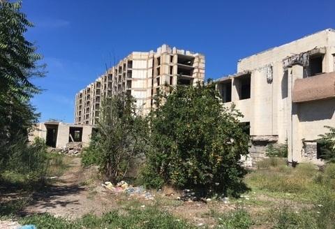 Продажа земельного участка 6.2 га Крым Николаевка - Фото 5