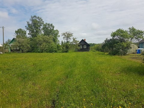 Продается дом с участком в д. Бабино - Фото 5