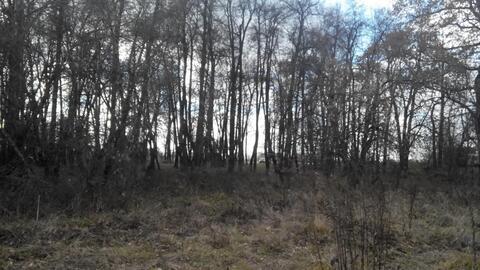 Участок 8 сот. , Симферопольское ш, 16 км. от МКАД. - Фото 4